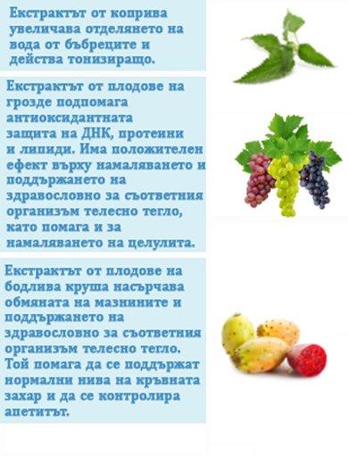 натурални екстракти коприва грозде бодлива круша