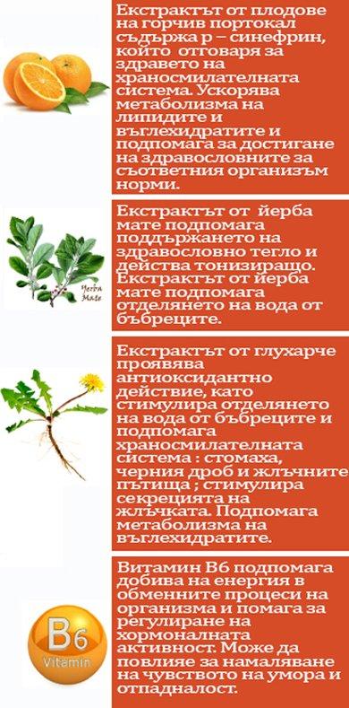 натурални екстракти от горчив портокал йерба мате глухарче витамин В6