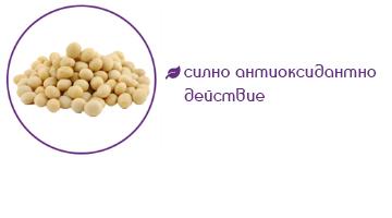 Изофлавони от соя помагат за: силно антиоксидантно действие